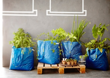 blue-bag-perennials-4-bags