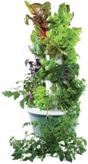 tower-garden-full